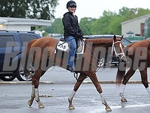 Princess of Sylmar - Belmont Park, May 24, 2014.