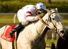 "Stardom Bound will be ridden by Garrett Gomez in the Kentucky Oaks. <br><a target=""blank"" href=""http://www.bloodhorse.com/horse-racing/photo-store?ref=http%3A%2F%2Fpictopia.com%2Fperl%2Fgal%3Fprovider_id%3D368%26ptp_photo_id%3D7865300%26ref%3Dstory"">Order This Photo</a>"