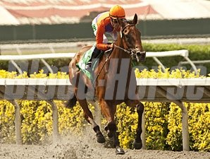 Beholder wins the Torrey Pine Stakes.