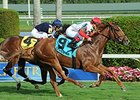 "Night Prowler won the Dania Beach Stakes on Jan. 3 at Gulfstream Park.<br><a target=""blank"" href=""http://photos.bloodhorse.com/AtTheRaces-1/At-the-Races-2015/i-7zG2xqW"">Order This Photo</a>"