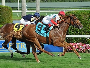 Night Prowler wins the 2015 Dania Beach Stakes.