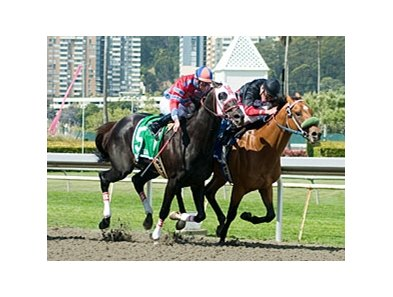 Run It defeated favored Bold Chieftain to win the the Berkeley Stakes at Golden Gate Fields.
