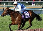 Goldikova in her 2010 BC Mile victory.<br>