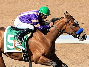 Plum Pretty wins the 2011 Sunland Park Oaks.