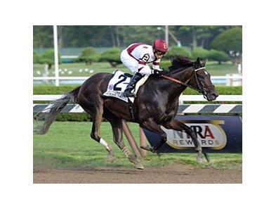 "Royal Delta won the 2013 Personal Ensign. <br><a target=""blank"" href=""http://photos.bloodhorse.com/AtTheRaces-1/at-the-races-2013/27257665_QgCqdh#!i=2723309224&k=ktzJkfV"">Order This Photo</a>"