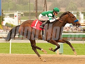 Iotapa wins the 2014 Santa Maria Stakes.