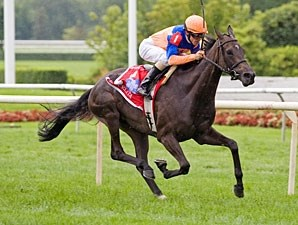 Stacelita wins the 2011 Beverly D.