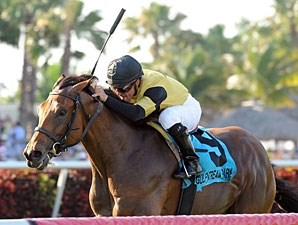 Twilight Eclipse wins the 2013 Pan American.