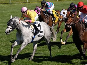 Silver Timber wins the 2010 Shakertown.