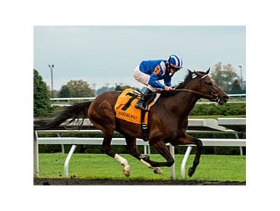 "Najjaar won the 2013 Sycamore Stakes. <br><a target=""blank"" href=""http://photos.bloodhorse.com/AtTheRaces-1/at-the-races-2013/27257665_QgCqdh#!i=2840528077&k=NM9JPMh"">Order This Photo</a>"