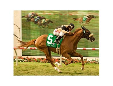 "Magical Fantasy rolled to a two-length victory at odds of over 42-1 in the Del Mar Oaks.<br><a target=""blank"" href=""http://www.bloodhorse.com/horse-racing/photo-store?ref=http%3A%2F%2Fpictopia.com%2Fperl%2Fgal%3Fprovider_id%3D368%26ptp_photo_id%3D5553339%26ref%3Dstory"">Order This Photo</a>"