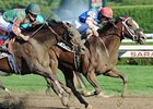 "C C's Pal holds off Island Bound to win the Honorable Miss.<br><a target=""blank"" href=""http://photos.bloodhorse.com/AtTheRaces-1/at-the-races-2012/22274956_jFd5jM#!i=2004526335&k=393Q9Cm"">Order This Photo</a>"