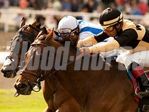 Liberian Freighter, inside, wins the 2011 Inglewood Handicap.
