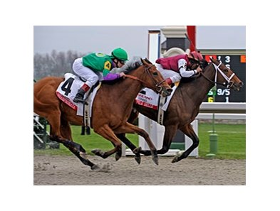 "Ashland Stakes winner Little Belle will take on older horses in the Spinster.<br><a target=""blank"" href=""http://www.bloodhorse.com/horse-racing/photo-store?ref=http%3A%2F%2Fpictopia.com%2Fperl%2Fgal%3Fprovider_id%3D368%26ptp_photo_id%3D4083954%26ref%3Dstory"">Order This Photo</a>"