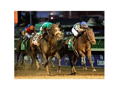 "Blame (right) and Zenyatta in the Breeders' Cup Classic.<br><a target=""blank"" href=""http://www.bloodhorse.com/horse-racing/photo-store?ref=http%3A%2F%2Fpictopia.com%2Fperl%2Fgal%3Fprovider_id%3D368%26ptp_photo_id%3D9272286%26ref%3Dstory"">Order This Photo</a>"