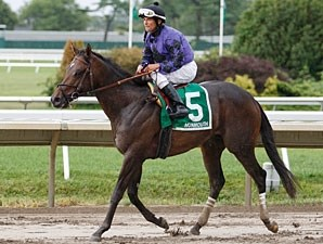 Vengeful Wildcat wins the 2010 Tyro Stakes.