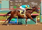"Hollywood Prevue winner Massive Drama heads the field for the San Rafael.<br><a target=""blank"" href=""http://www.bloodhorse.com/horse-racing/photo-store?ref=http%3A%2F%2Fpictopia.com%2Fperl%2Fgal%3Fprovider_id%3D368%26ptp_photo_id%3D2844014%26ref%3Dstory"">Order This Photo</a>"