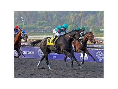 "Zenyatta's Breeders' Cup Classic victory is one of the choices for NTRA Moment of the Year.<br><a target=""blank"" href=""http://www.bloodhorse.com/horse-racing/photo-store?ref=http%3A%2F%2Fpictopia.com%2Fperl%2Fgal%3Fprovider_id%3D368%26ptp_photo_id%3D8609312%26ref%3Dstory"">Order This Photo</a>"