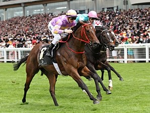 Little Bridge wins the 2012 King's Stand.