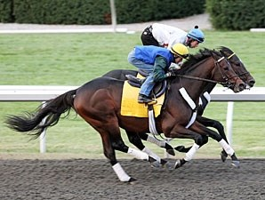 Blame (outside) and Apart work at Keeneland on 10/24/10.