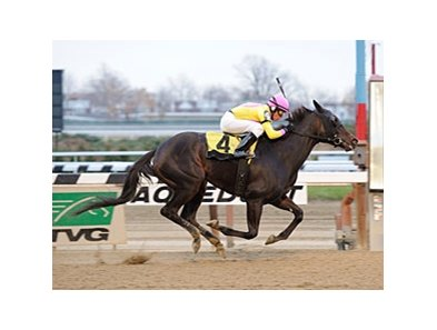 "Singlet powers home to win the Garland of Roses.<br><a target=""blank"" href=""http://photos.bloodhorse.com/AtTheRaces-1/at-the-races-2012/22274956_jFd5jM#!i=2247697020&k=PvVz2sf"">Order This Photo</a>"