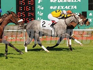 Backseat Rhythm (inside) wins the 2009 Hillsborough