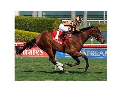 Little Mike wins the 2011 Appleton Stakes.