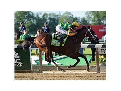 "Palace Malice winning the Belmont Stakes.<br><a target=""blank"" href=""http://photos.bloodhorse.com/TripleCrown/2013-Triple-Crown/Belmont-Stakes-145/29744699_jpqpwR#!i=2563006351&k=rfWBhdd"">Order This Photo</a>"