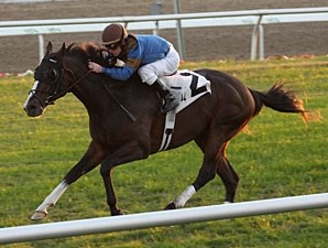 Evolutionist wins the 2009 Woodchopper.