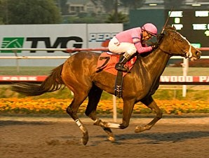 Washington Bridge wins the 2010 Bayakoa.