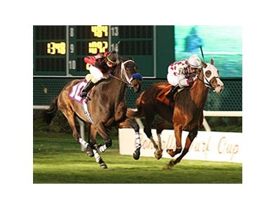 Acting Zippy held off Orientate Express for a neck victory in the John B. Connally Turf Handicap at Sam Houston Race Park.