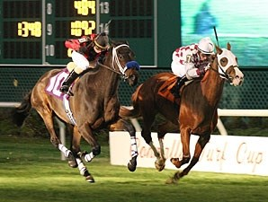 Acting Zippy wins the 2010 John B. Connally Turf.