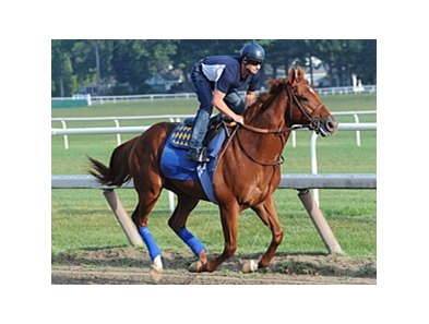 Coil working at Saratoga