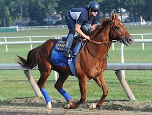 Coil working at Saratoga August 9th.