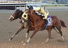 "Classic Point (inside) fights off Princess Violet to win the Go for Wand.<br><a target=""blank"" href=""http://photos.bloodhorse.com/AtTheRaces-1/At-the-Races-2014/i-Hjbj84V"">Order This Photo</a>"