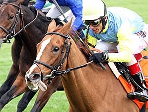 Dayatthespa wins the 2014 First Lady Stakes.