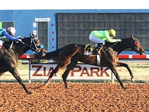 African Rose wins the 2012 Zia Park Distaff.