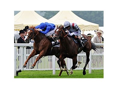 Dawn Approach wins the St. James Palace Stakes.