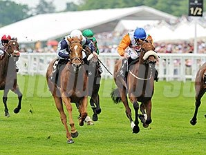 Duntle wins the Duke of Cambridge Stakes.