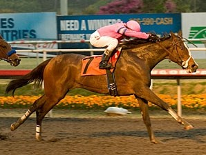 Washington Bridge wins the 2010 Bayakoa