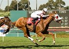 "Pure Clan won the American Oaks (gr. IT) July 5 at Hollywood Park. <br><a target=""blank"" href=""http://www.bloodhorse.com/horse-racing/photo-store?ref=http%3A%2F%2Fpictopia.com%2Fperl%2Fgal%3Fprovider_id%3D368%26ptp_photo_id%3D5033293%0D%0A%26ref%3Dstory"">Order This Photo</a>"