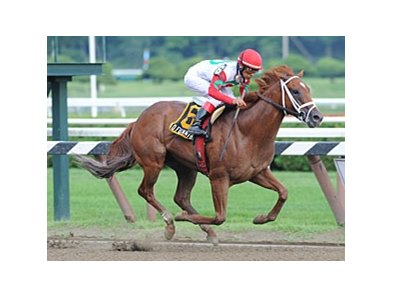 "D' Funnybone will likely be the overwhelming favorite for the Futurity.<br><a target=""blank"" href=""http://www.bloodhorse.com/horse-racing/photo-store?ref=http%3A%2F%2Fpictopia.com%2Fperl%2Fgal%3Fprovider_id%3D368%26ptp_photo_id%3D8419329%26ref%3Dstory"">Order This Photo</a>"