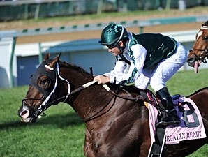 Turf Stars Set for Dubai Super Saturday
