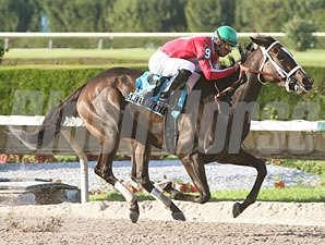 Sweet Repent wins the 2009 Elmer Heubeck Distaff.