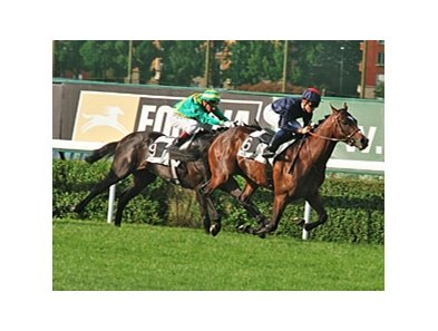 Pour Moi in the Prix Greffulhe
