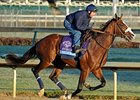 "Union Rags at Churchill Downs on November 1.<br><a target=""blank"" href=""http://www.bloodhorse.com/horse-racing/photo-store?ref=http%3A%2F%2Fpictopia.com%2Fperl%2Fgal%3Fprovider_id%3D368%26ptp_photo_id%3D9725466%26ref%3Dstory"">Order This Photo</a>"
