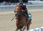 "Awesome Feather<br><a target=""blank"" href=""http://photos.bloodhorse.com/AtTheRaces-1/at-the-races-2012/22274956_jFd5jM#!i=2099274765&k=QFLtH7d"">Order This Photo</a>"