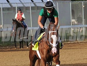 Will Take Charge - Churchill Downs, May 2, 2013.