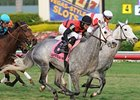 "Snow Top Mountain outfinishes Hit It Rich to win the  Suwannee River Stakes at Gulfstream.<br><a target=""blank"" href=""http://www.bloodhorse.com/horse-racing/photo-store?ref=http%3A%2F%2Fpictopia.com%2Fperl%2Fgal%3Fprovider_id%3D368%26ptp_photo_id%3D9812053%26ref%3Dstory"">Order This Photo</a>"