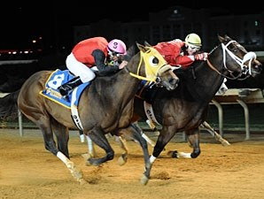 Henry the Lover wins the 2012 West Virginia Dash for Cash Breeders' Classic.